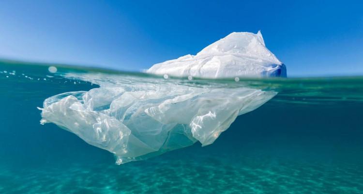 Journée mondiale sans sacs plastique