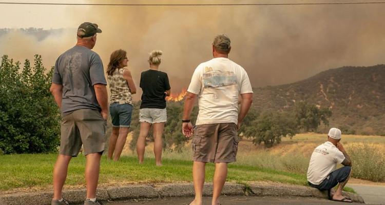 Californie : des feux ont ravagé plus de 8 000 km2