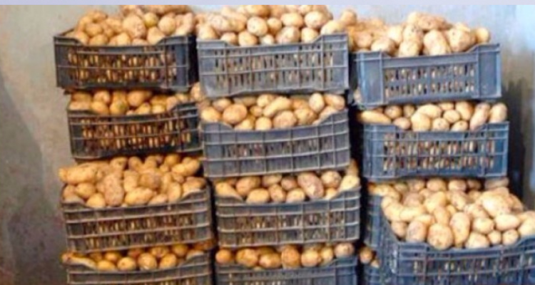 صفاقس : حجز 45 طن من البطاطا والتفاح داخل مخزن