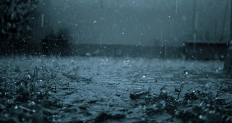 الليلة: أمطار رعدية ومتفرقة ب3 ولايات