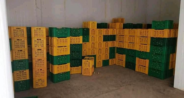 Tajerouine : Saisie de fruits d'une valeur de 431 mille dinars