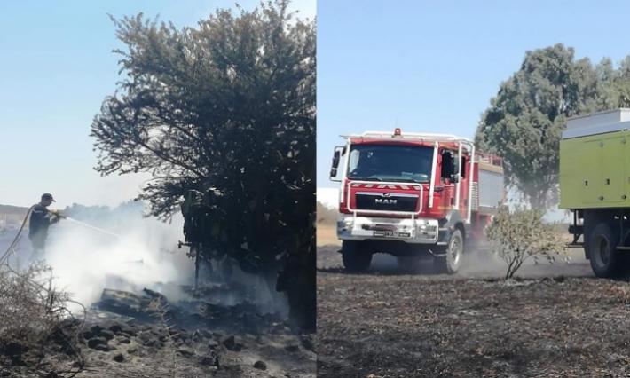بنزرت: نشوب حريق بمنطقة القتمة بسجنان يأتي على 8 هكتارات من الحصيدة ولا أضرار بشرية