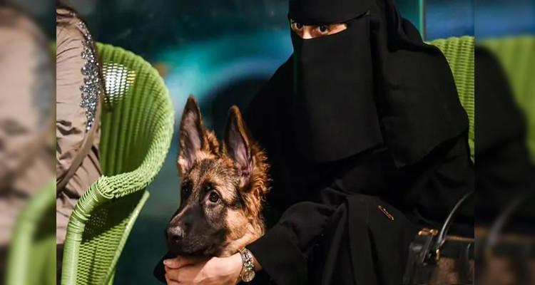 مقهى الكلاب السعودية