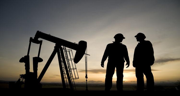 كمال الشارني: وزارة الطاقة ستطلق بوابة إلكترونية ضخمة