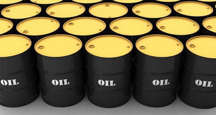 الشارني: المعدل اليومي لإنتاج النفط في تونس يصل إلى 38 ألف برميل