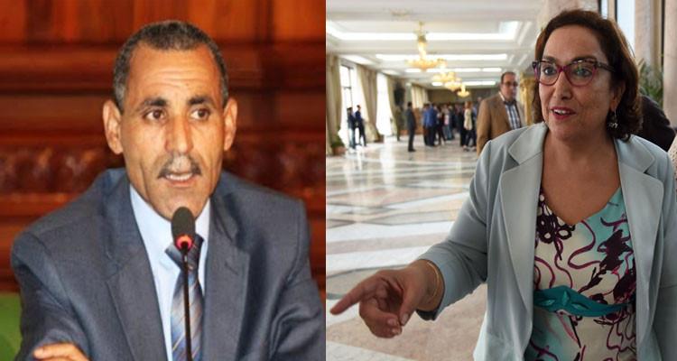 محامون يعتزمون مقاضاة فيصل التبيني بعد تصريحاته ضد بشرى بالحاج حميدة