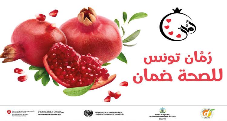 La grenade de Tunisie : un programme de valorisation et de promotion