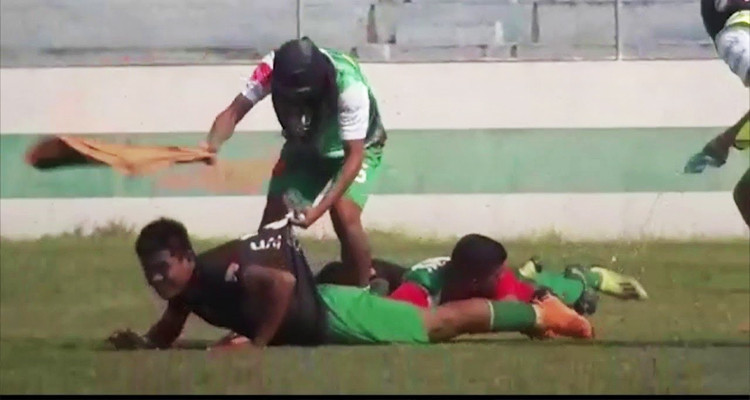 جحافل النحل تهاجم مباراة كرة قدم رهانها الصعود وتتسبب في إيقافها (فيديو)