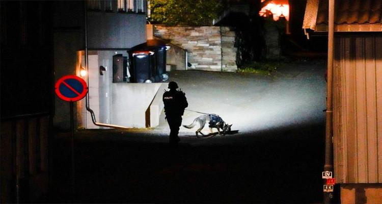 متسلحا بقوس وسهام: إرهابي يقتل ويجرح العشرات في النرويج