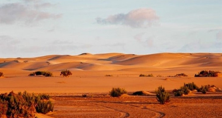 القيادات الدينية والسياسة بإفريقيا جنوب الصحراء: الإمام محمود ديكو نموذجًا